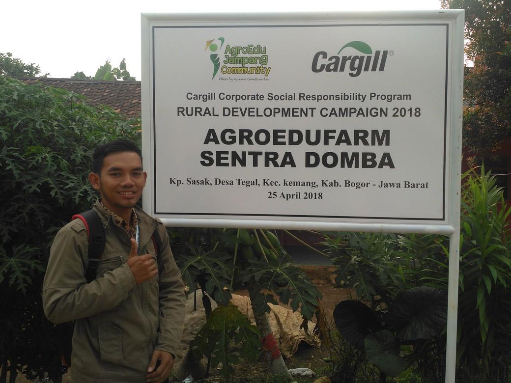 Harga kambing aqiqah murah berkualitas siap kirim di Sukadamai Bogor hubungi 0895-2186-8651