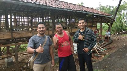 Penjual kambing aqiqah Jakarta Selatan 2